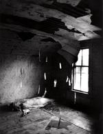Anne Arden  McDonald: Untitled Self-Portrait #12, 1989