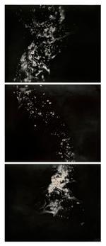 Christopher Colville: Hydra Triptych, 2013
