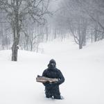 Cig Harvey: The Blizzard, Rockport Maine, 2013
