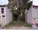 Daniel Traub: Lot, Wallace Street near North Forty Third Street, West Philadelphia, 2010