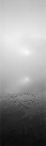 David H. Gibson: Sunrise, August 24, 2003, 7:12 AM, Eagle Nest Lake, New Mexico