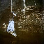 Diana Bloomfield: Girl on a Swing, 2011