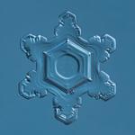 Douglas Levere: Snowflake 2015.02.25.003