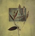 James Hajicek & Carol Panaro-Smith: Botanical/06-4