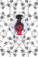JP Terlizzi: Aram Black Orchid with Berries, 2019