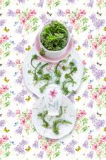 JP Terlizzi: Lenox Butterfly Meadow with Broccolini, 2019