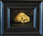 Kate Breakey: Velvet Monkey Skull