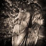 Keith Carter: Angel and Stars