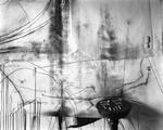 Lauren Semivan: Untitled (Bones), 2019