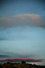 Laurie Tümer: Cloud No. 3630
