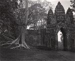 Elvira Piedra: Dawn, South Gate, Angkor, Cambodia, 2002