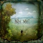 Maggie Taylor: Now what?, 2012