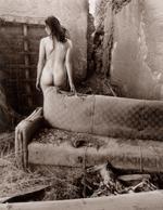 Patti Levey: Dead Dog, 1991