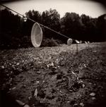 Perry Dilbeck: Pie Pans, 1999