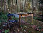 Susannah Hays: Nature's Writing Desk