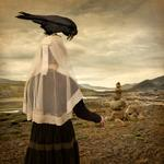 Tom Chambers: Come What Is